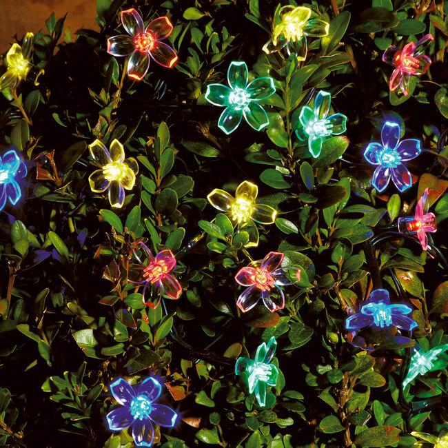 35 LED Novelty Solar String Lights