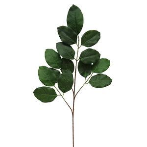 Tilia Europaea Leaf Foliage 75cm