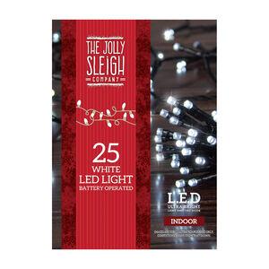 25 LED Lights White