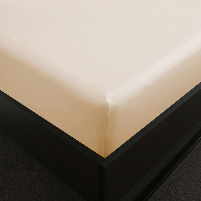 SINGLE FITTED SHEET 200 Threadcount Cotton Cream