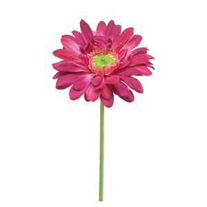 Gerbera Flocked Stem Flower 43cm