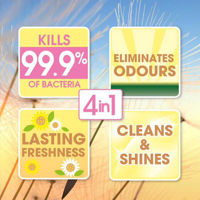 Floella Concentrate Disinfectant Summer Dreams