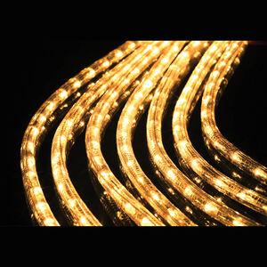 Warm White Rope Light Chaser 10m