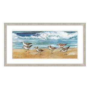6 Beach Birds 595cm x 1115cm