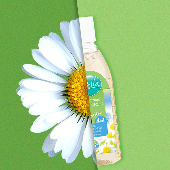 Floella Concentrate Disinfectant Fresh Meadow