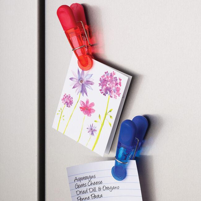Kitchen Craft Magnetic Bag Clips