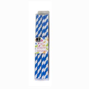 Swirl Paper Straws 30 Pack