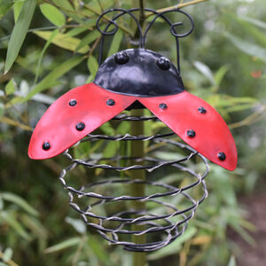 Ladybird Spiral Solar Lantern