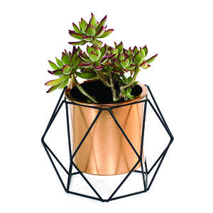 Geometric Plant Holder with Copper Pot