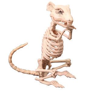 Rat Skeleton 33cm