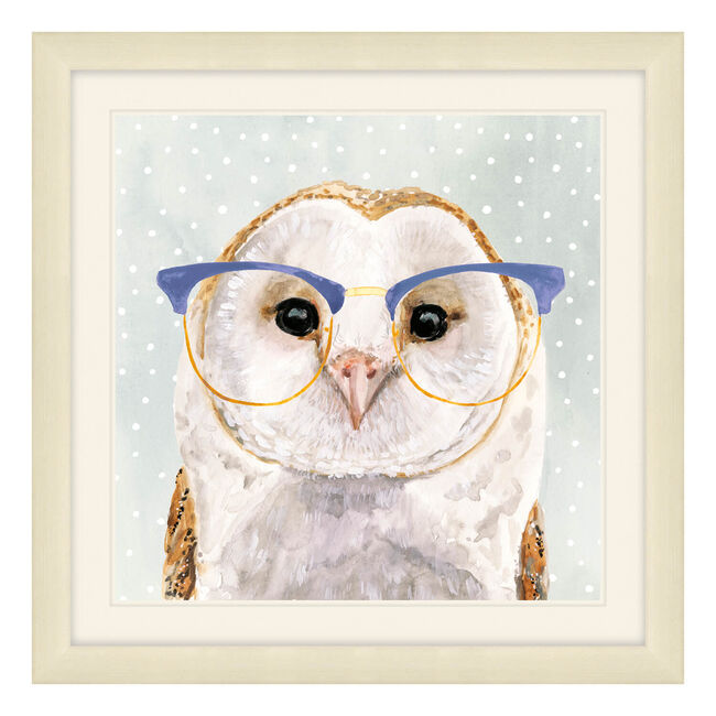 Foureyed Forester Framed 37 x 37cm - Owl