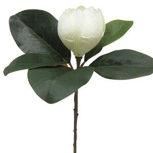 Magnolia Branch Bridal White 60cm