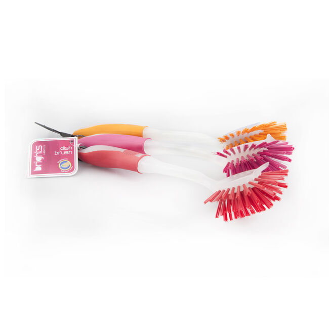 Brights Fan Tail Dish Brush