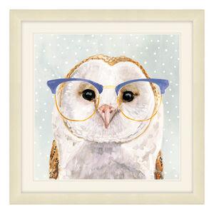 Foureyed Forester Framed 37 x 37cm - Owl