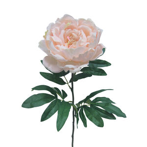 Peony Single Stem Pink Flower 74cm