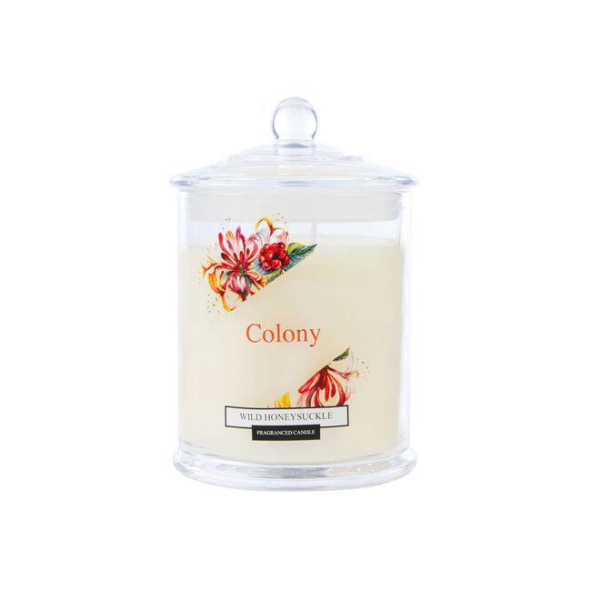 Colony Wild Honeysuckle Candle 12.6oz