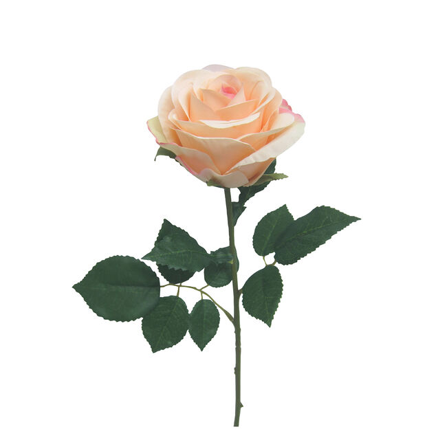 Rose Single Stem Pink Flower 50cm