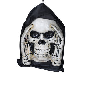 Hanging Window Skull Face