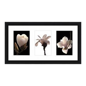 Apple Blossom Triple Frame 54cm x 106cm