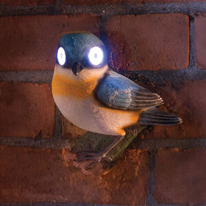 Bright Eye Bird Solar Light