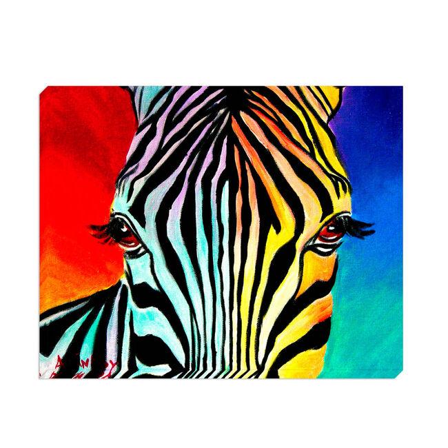 Funky Zebra 75cm x 60cm