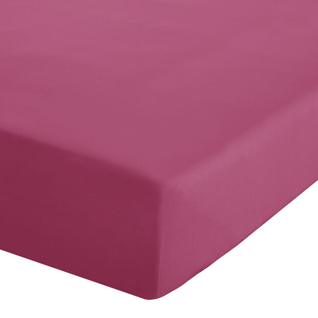 SINGLE FITTED SHEET Luxury Percale Hot Pink