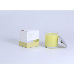 Antigua Large Scented Candle