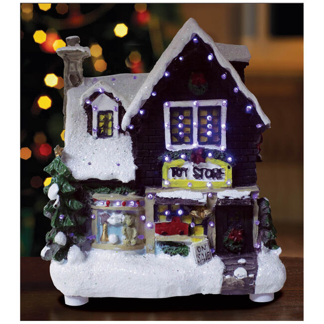 Light Up Toy Store