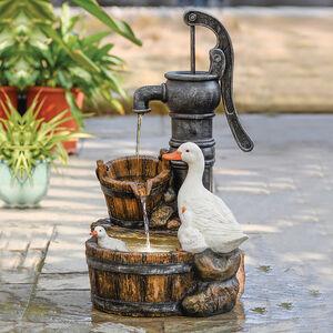 Ducks at Pump Water Fountain