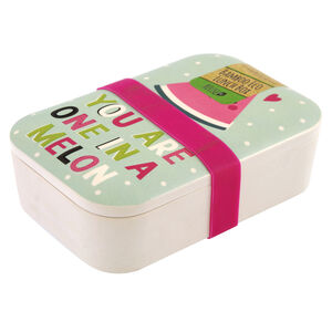 One in a Melon Lunch Box
