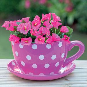 Polka Dot Giant Teacup Planter