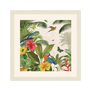 Parrot Paradise Framed 37x37cm