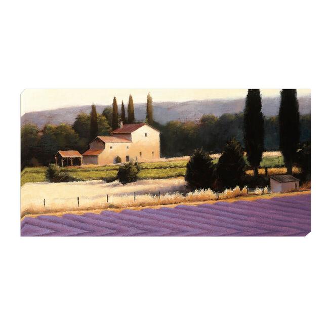 Lavender Field 50cm x 100cm