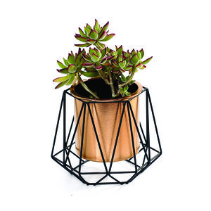 Metal Decorative Planter with Copper Pot