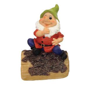 Whistling Gnome On Log