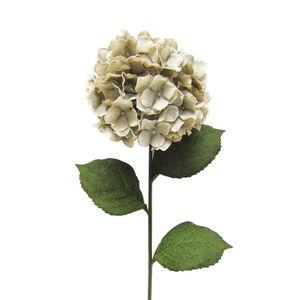 Hydrangea Spray Stem Flower Champagne 74cm