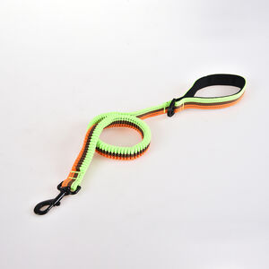 Shock Absorbing Dog Lead