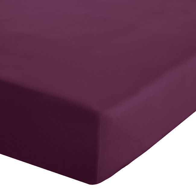 SINGLE FITTED SHEET Luxury Percale Plum