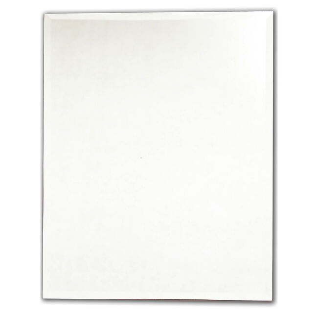Rectangular Ensuite Bevelled Mirror 50cm x 40cm