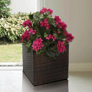 Small Square Rattan Plant Pot