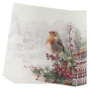 Robin Snow Scene Napkin 20 Pack