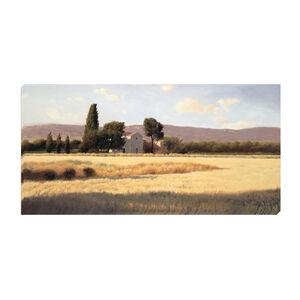 Fields of Gold 50cm x 100cm