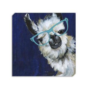 Funky Llama Canvas 70 x 70cm