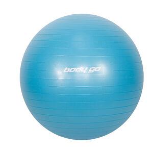 Body Go Anti-Burst Gym Ball with Foot Pump