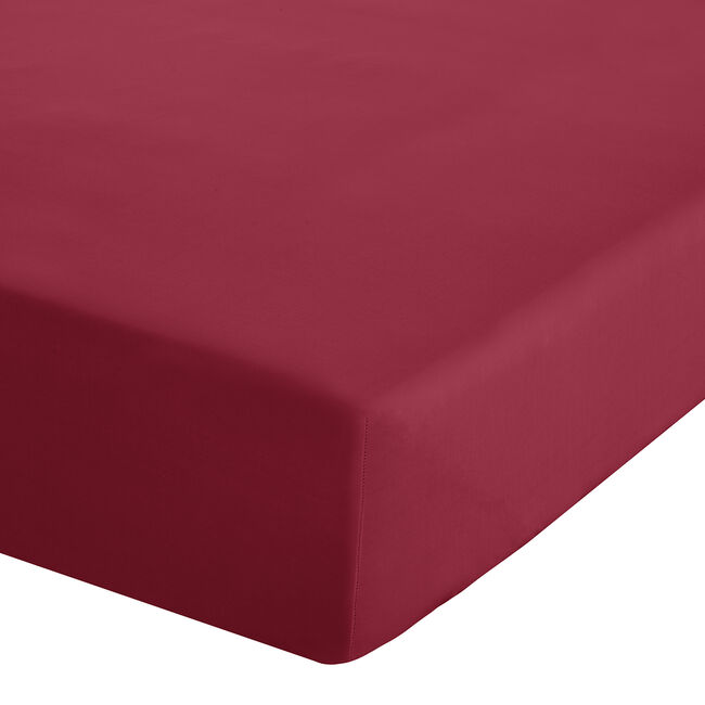 SINGLE FITTED SHEET Luxury Percale Red