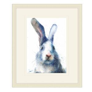 White Rabbit Framed 38cm x 48cm