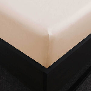 SB FITTED SHEET 500 Threadcount Cotton Cream
