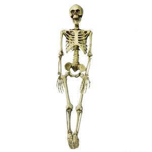 Hanging Skeleton 3ft