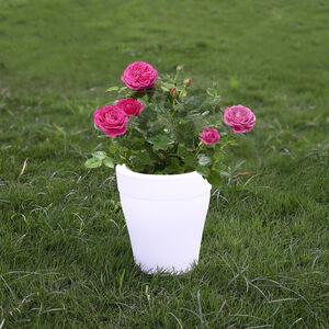 Colour Changing LED Plant Pot